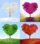 Les saisons de la vie, les saisons de l'amour